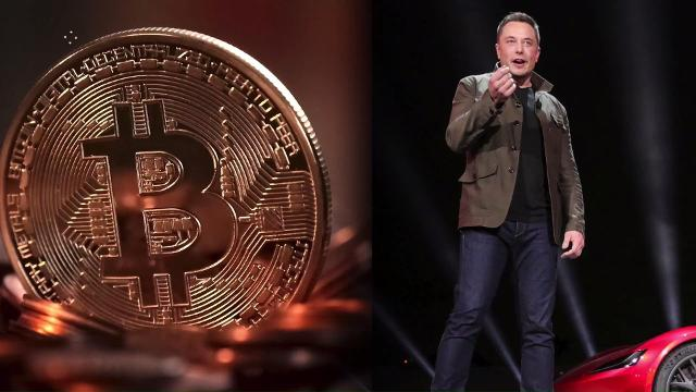 Elon Musk reacts to rumor that he created Bitcoin