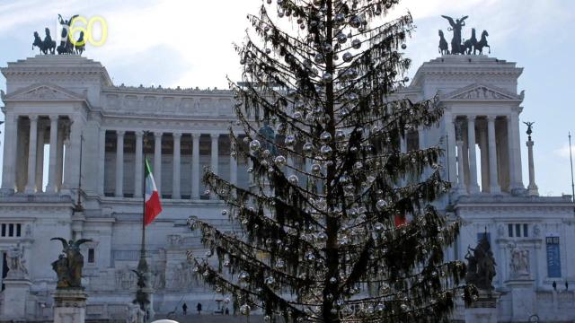 Rome's sickly Christmas tree causes uproar as needles continue to fall