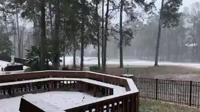 Floridians revel in rare snow