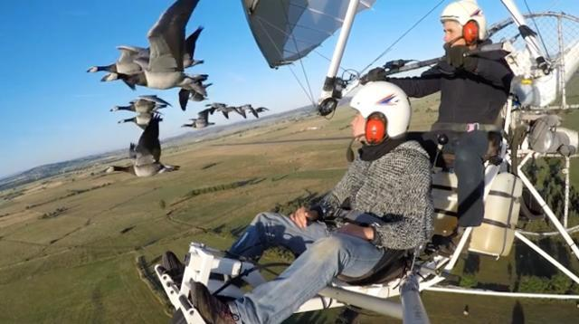 This man knows what it's like to fly with birds