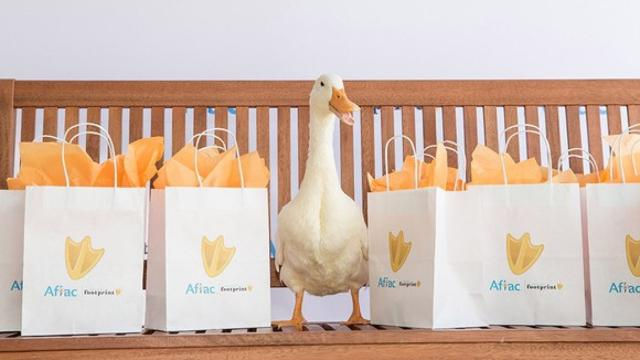Robot duck comforts kids with cancer