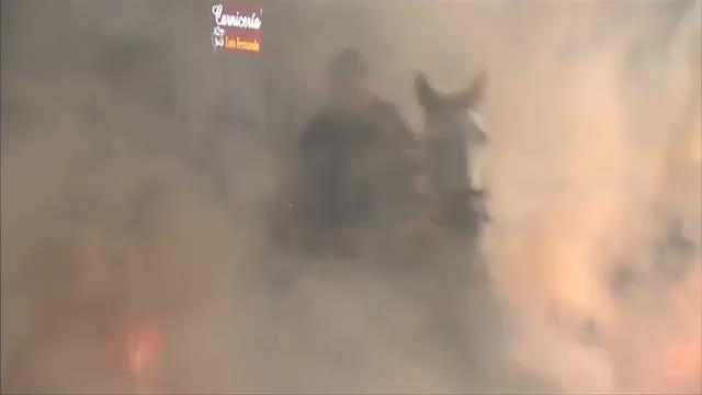Horses jump through raging bonfires for Spanish festival