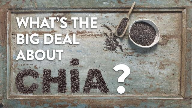 What's the big deal about Chia?