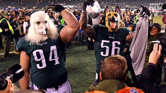 Which NFL franchises never to have won Super Bowl are closest to title  breakthrough  12056f41c