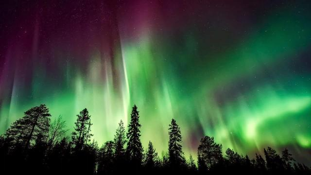 The Northern Lights, or the Aurora Borealis. The Vikings thought it was a road to the Gods, but we now know exactly what those beautiful lights actually are.