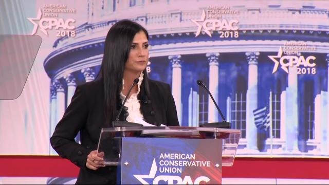 NRA: 'Many in legacy media love mass shootings'