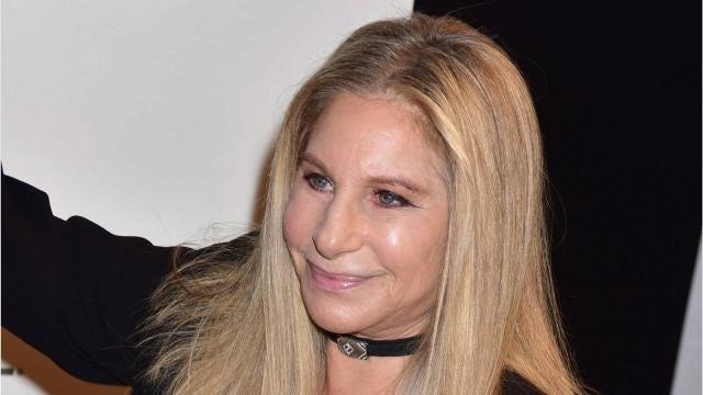 Barbra Streisand successfully cloned her pet dog