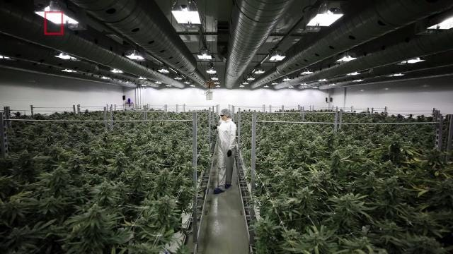 California's marijuana market is expected to be bigger than beer