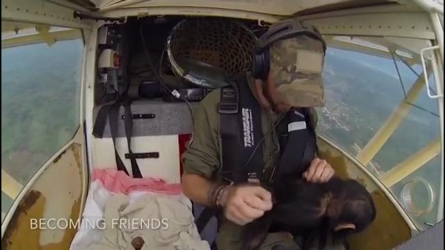 Mussa, a baby chimpanzee rescued from poachers in the Democratic Republic of Congo, appeared to be making the most of his flight to his new home, a primate rehabilitation center in another part of the country. (March 1)