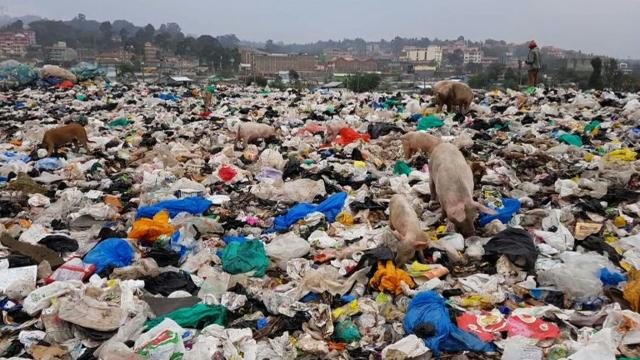 As plastic refuse continues to clog waterways and fill landfills, researchers have engineered a plastic-eating enzyme. Video provided by AFP
