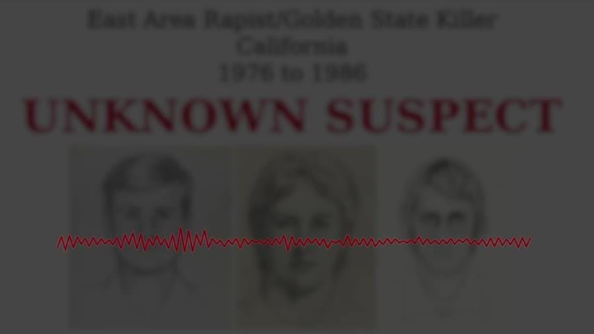 A former cop is accused of living a double life terrorizing neighborhoods at night, becoming one of California's most feared serial killers and rapists in the 1970s and '80s before leaving a cold trail that baffled investigators for decades. (April 26)