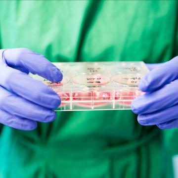 'Women have to train men': Burden of sexually transmitted infection detection largely falls to women