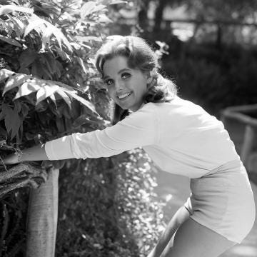 Dawn Wells body