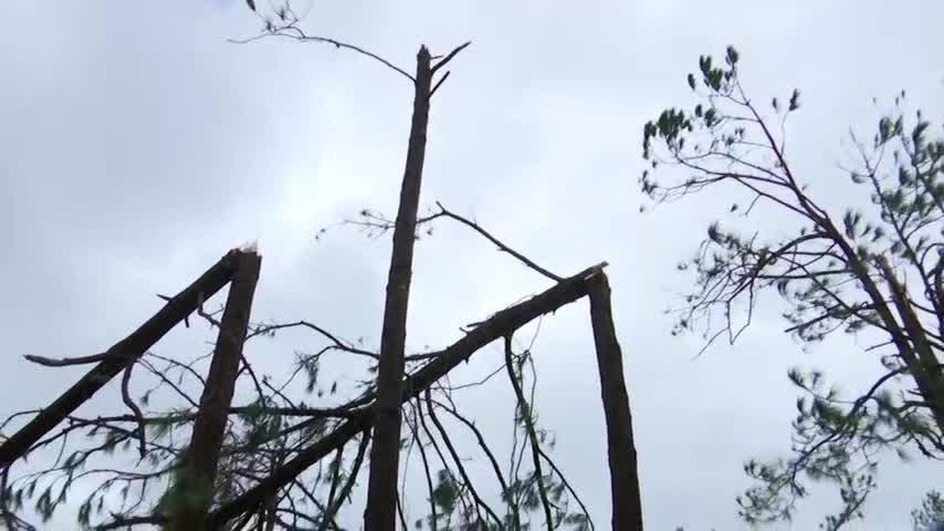 Hurricane Michael\'s two-hour assault devastates Panama City, Florida