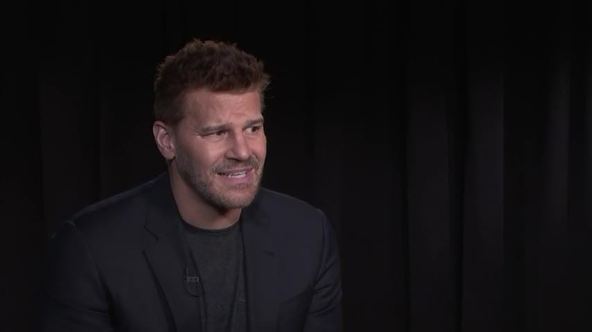 David Boreanaz admittedly has a type when it comes to acting roles