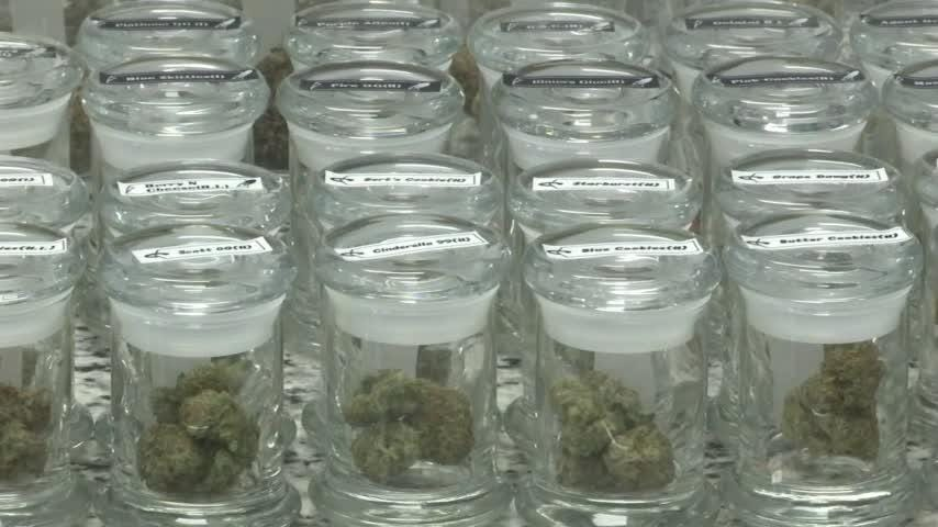 Michigan is aiming to build a potentially lucrative industry from the ground up with passage of a ballot initiative to legalize recreational marijuana. (Nov. 7)