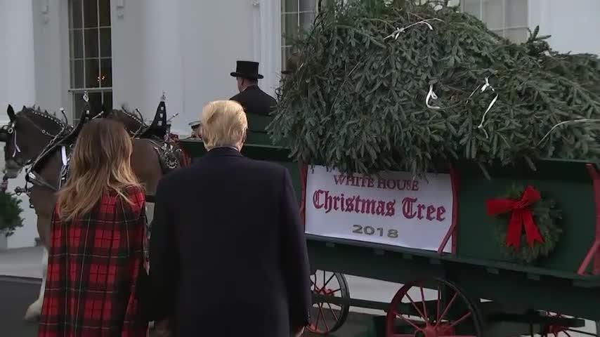 c714a754ea759 President Trump first lady Melania Trump greet WH Christmas tree