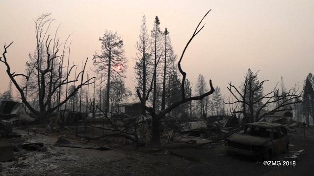 Burning Wood Temporarily Banned In Some Areas