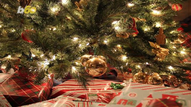 6 places where you can buy a live christmas tree in clarksville