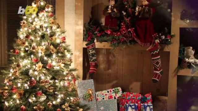 Here's what happens to unsold Christmas trees