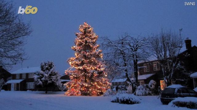 It takes more than a thousand lights to illuminate this gargantuan 52 foot Christmas tree. Buzz60's Tony Spitz has the details.