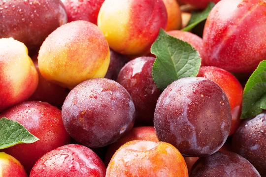 Listeria concerns: Peaches, plums, and nectarines recalled nationwide