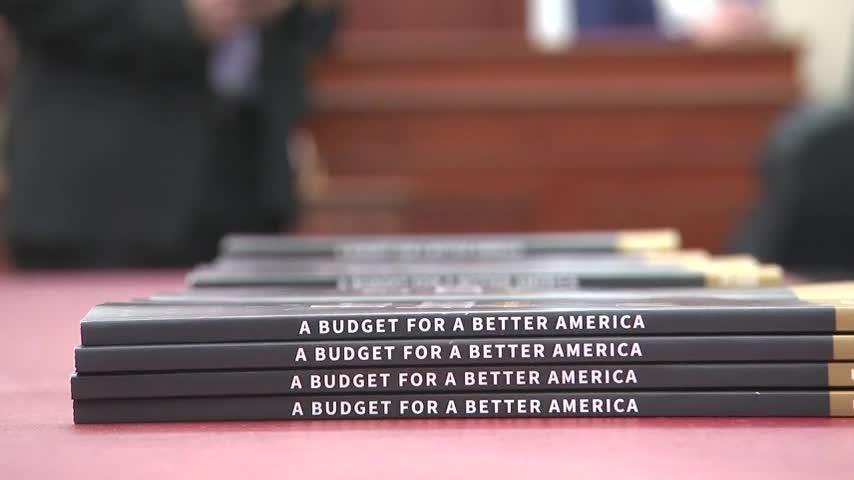 Congress receives Trump's new 2020 budget