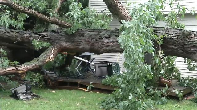 A quick moving storm blew over a large tree across Britney Friends backyard and car on Wednesday afternoon.