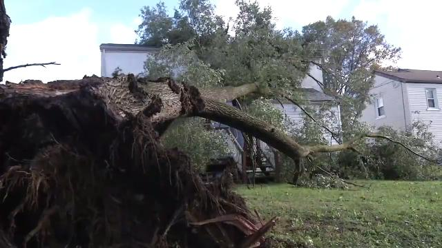 Wind blows tree onto northern Delaware house