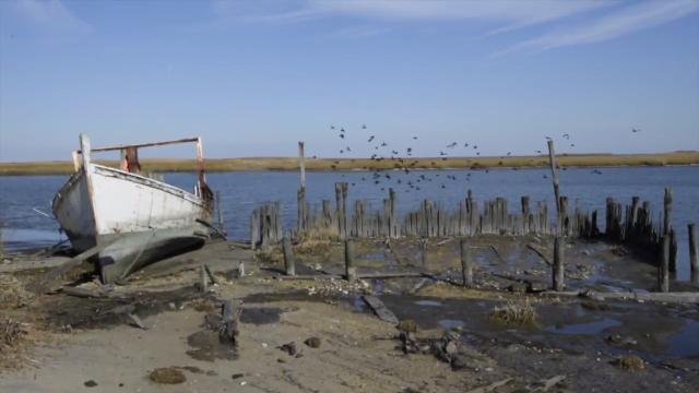 Delaware anglers survive 'mega' quake