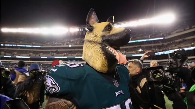 Dogs and Eagles living together for a Super Bowl trip
