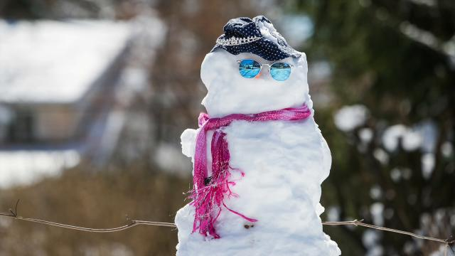 Snowmen from around Delaware wish to say good-bye to winter and welcome spring.
