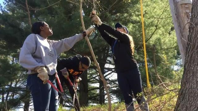 University of Delaware students spent Sunday morning clearing invasive vines and weeds from White Clay Creek State Park. Their service project was part of international Earth Day, dedicated to making the world a cleaner, healthier place to live.