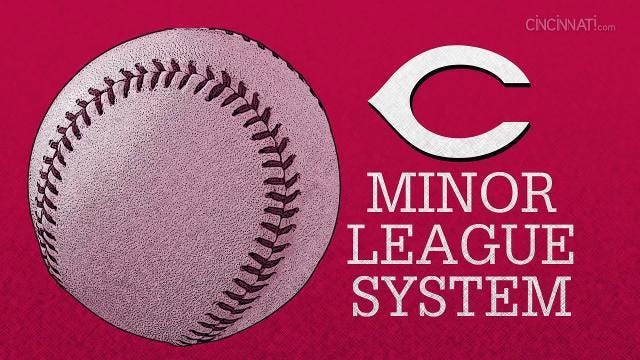 The Cincinnati Reds Minor League System