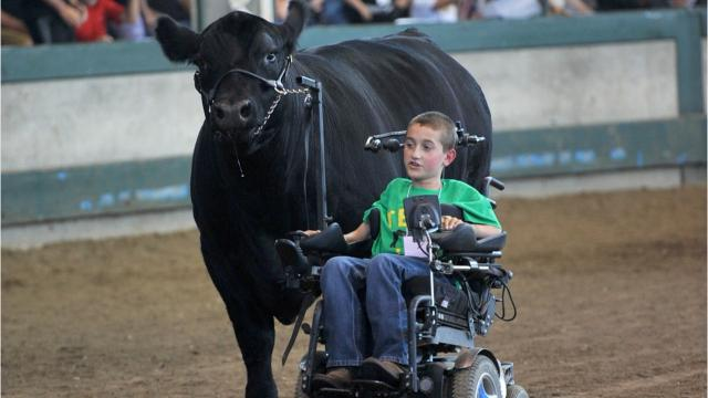 Alec Gotto, 11, despite a neurological disorder that paralyzed him at 8 months old, has become an enthusiastic exhibitor of Angus beef cattle. This year at the Iowa State Fair he led his steer in his wheelchair in the Governor's Charity Steer Show.
