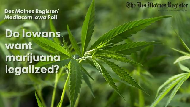 Iowans overwhelmingly support legalizing marijuana for medical purposes, but they don't support allowing recreational uses, an Iowa Poll from 2017 shows.