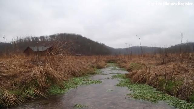 Find out how native Iowan Michael Osterholm turned a corn field in to a creek on his land near the tiny town of Dorchester.