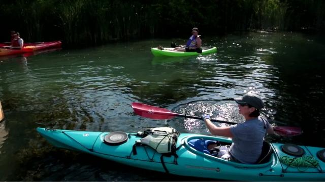 Paddle to Table event at Detroit River Sports and Coriander Kitchen and Farm, July 9, 2017.