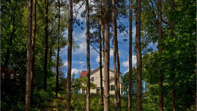 Tax auction offers fixer uppers that could turn into dream cottages.