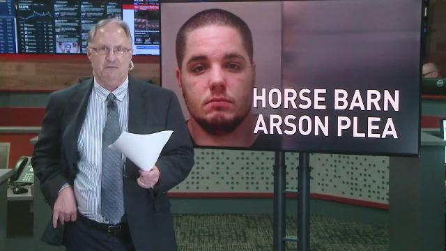 Man admits to fire that killed 13 horses