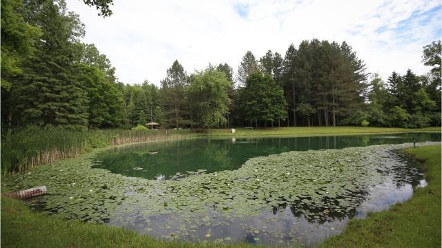 Log cabin house has half-acre koi pond