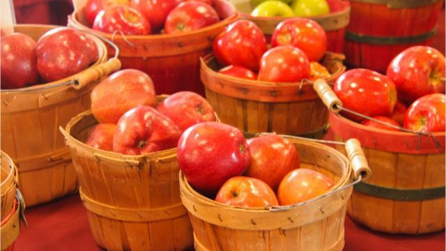 Whether you're picking them from an orchard or from a shelf in the grocery store, here's a look at the different varieties of apples in Michigan and when they're harvested, so you know when to be on the lookout for them.
