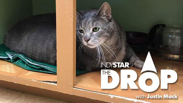 The Drop for July 24: impeachment split, Pacers snub Cavs and a fat cat needs a home