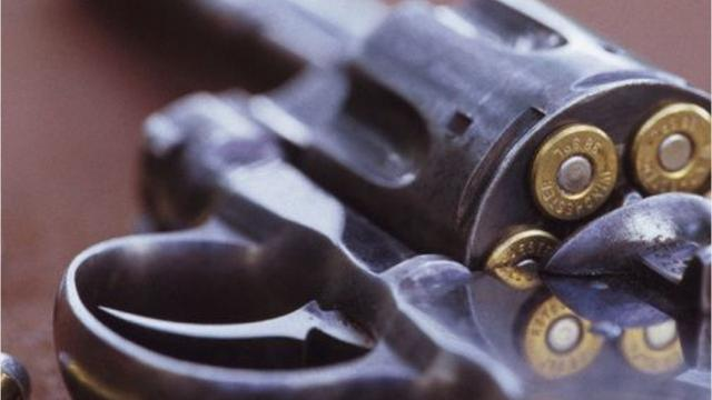 Juveniles fired revolver at houses