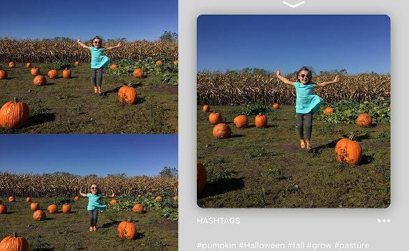 iPhone app Lisa analyzes multiple photos with the goal of telling you, the photographer, which one is the best option to post to social media.