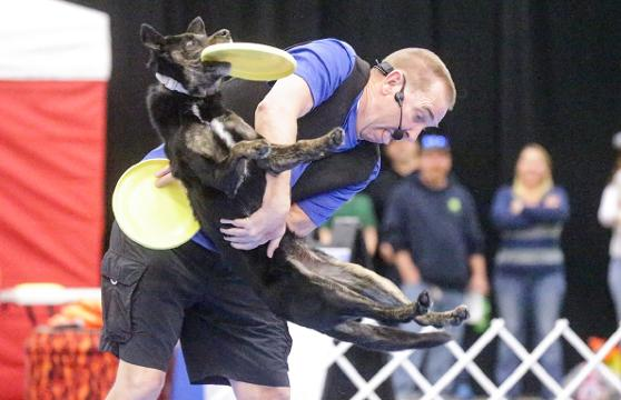 Tony Hoard's K9 Crew Trick Dog Show jumps into action at the Indianapolis  Boat, Sport & Travel Show on Monday, Feb. 19, 2018.