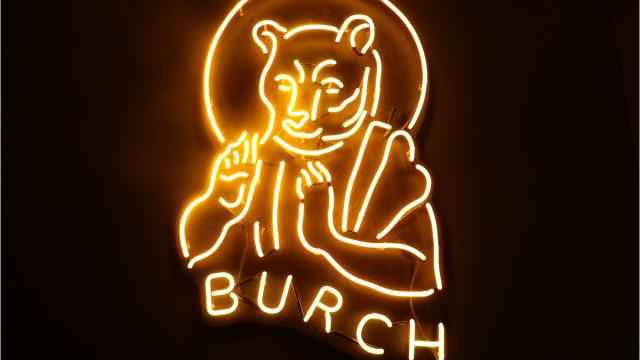 Before the University of Iowa football had Herky the Hawk, there was Burch the Bear.
