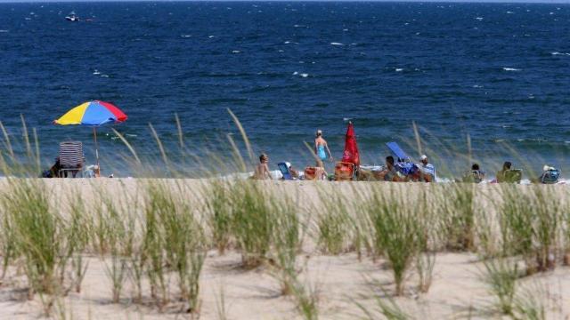 f916bb762bf4bd Beach report  Jersey Shore safe to swim again