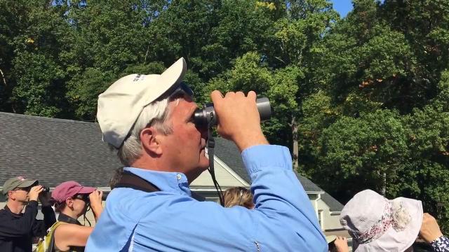 New Jersey Audubon hosted a hawk migration watch Sept. 16, 2017 at its Scherman Hoffman wildlife sanctuary in Bernardsville.