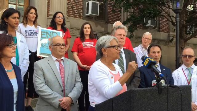 WATCH: Federal lawmakers call on gun control in New Brunswick